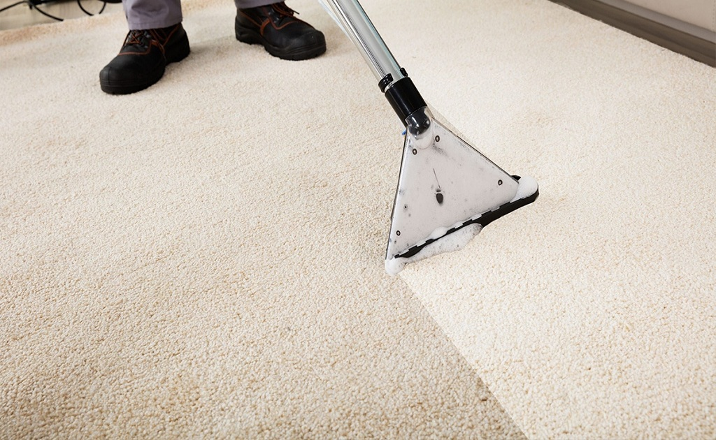 Preventing Mould On Carpets