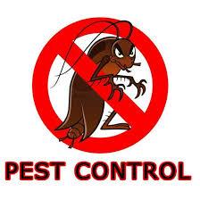 Hiring Professional Pest Control Service Advantages