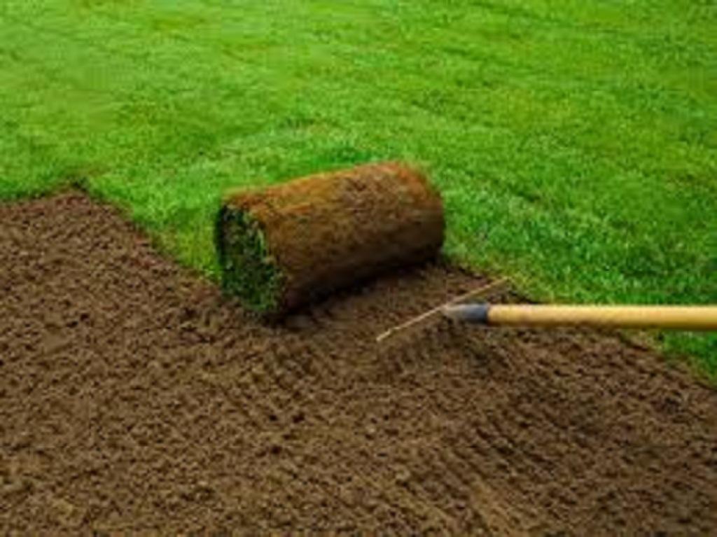 Some of Basic Gardening Tools